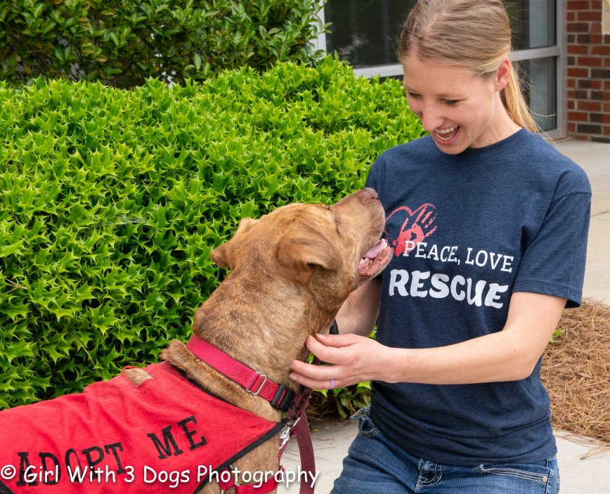 Helping Animals In Need Through T-Shirt Fundraisers